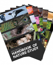 Handbook of Nature Study Bundle